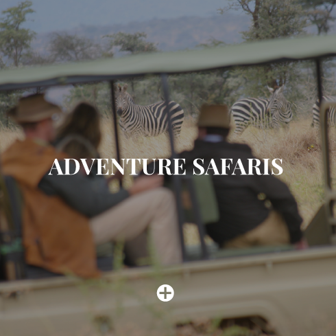 adventure-safaris