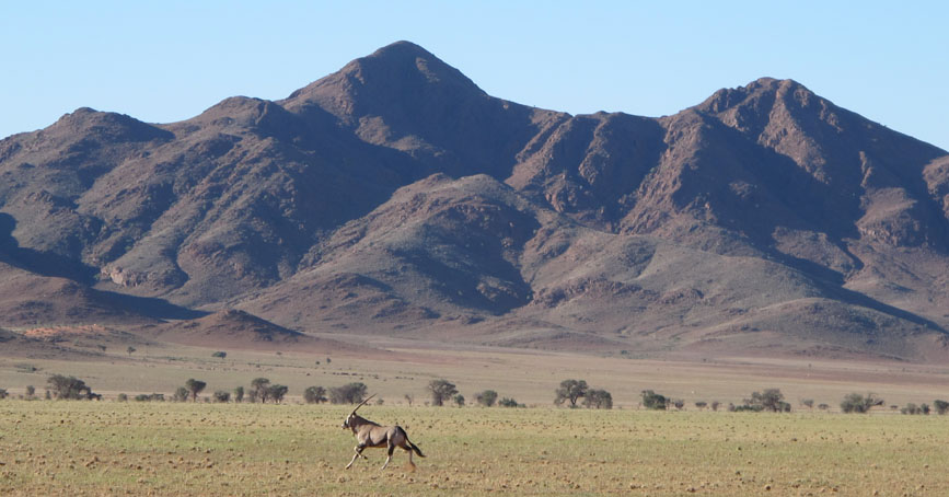 namibia-photo-safaris